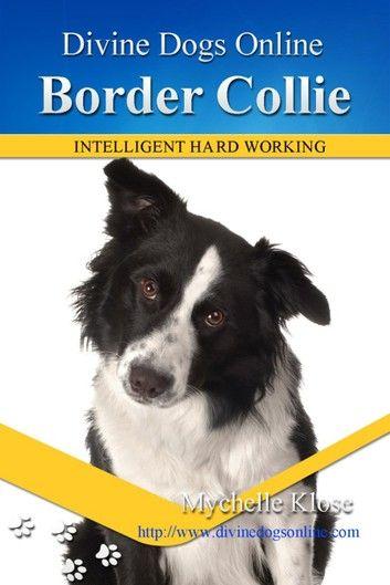 Border Collie Border Collie Collie Dogs Online