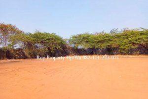 Tanah Kebun Sawit Untuk Dijual
