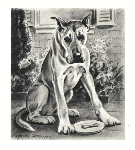 Vintage Color Dog Print Fawn Great Dane MATTED