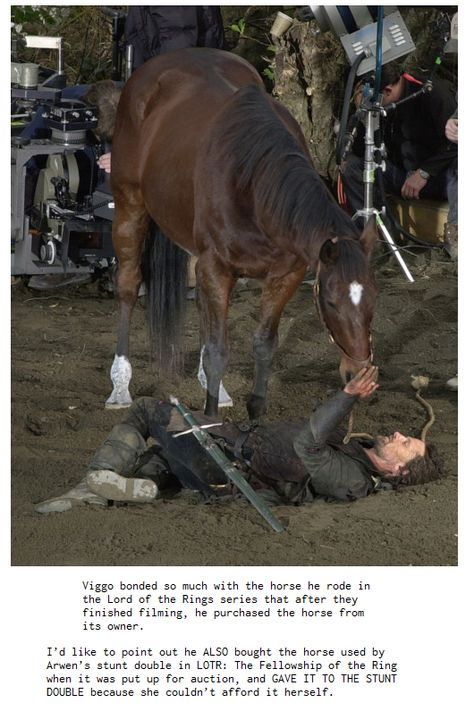 Viggo the best Tolkien actor - he was asked to reprise his role in the hobbit , he said no because Aragorn is not in the book! Legolas, Aragorn And Arwen, Thranduil, Fellowship Of The Ring, Lord Of The Rings, The Ring Series, Amazing Animals, Stunt Doubles, O Hobbit