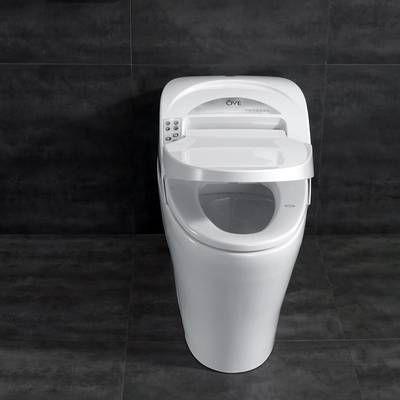 Washlet G400 Integrated Dual Flush 1 28 or 0 9 GPF Floor
