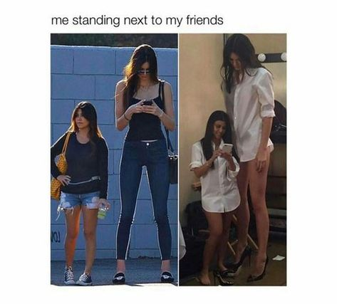 51 Trendy ideas for quotes short funny tall girls Tall People Memes, Short People Problems, Short People Humor, Short People Quotes, Girl Problems Funny, Short Girl Problems, Teenage Girl Problems, Short Girl Memes, Short Girls