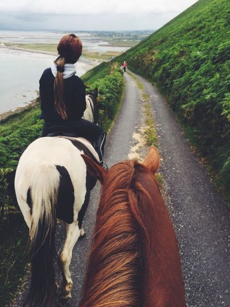 This looks like an nice Horseback ride in the Irish Countryside by the sea.This looks like an nice Horseback ride in the Irish Countryside by the sea. Horse Love, Horse Girl, Trail Riding, Horse Riding, Arte Equina, Horse Photography, Adventure Is Out There, Horseback Riding, Beautiful Horses