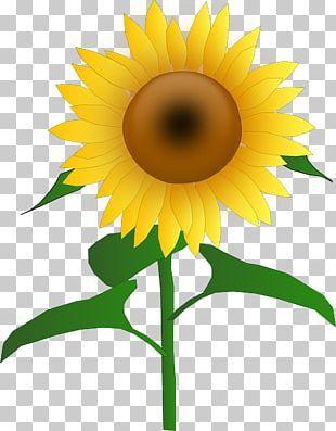 Sunflower Icon Agriculture Iconset Xaml Icon Studio Icon Design Inspiration Flower Icons Sunflower