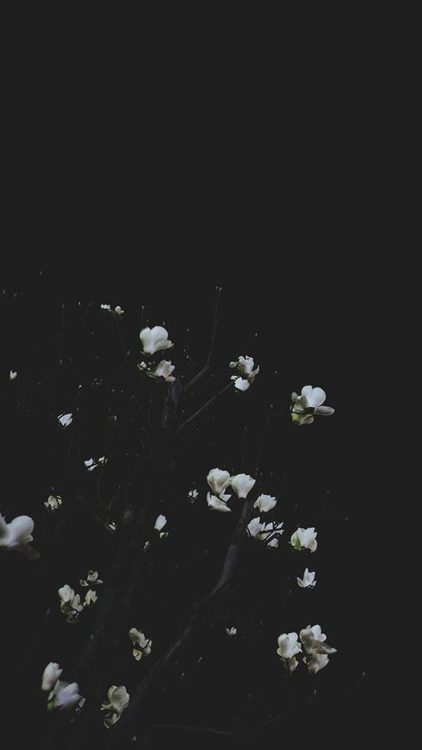 Take A Chill Pill With 10 Mindful Iphone Wallpapers Dark Wallpaper Iphone Chill Wallpaper Aesthetic Iphone Wallpaper