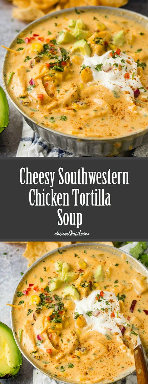 a cheesy version of everyone's favorite chicken tortilla soup! You are going to go crazy for this family favorite recipe that can be made stove top or slow cooker!  #recipe #chicken #tortilla #soup #slowcooker