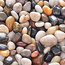 Pop Bottle Ecosystem Decorative Gravel Landscaping With Rocks Decorative Landscaping Stone