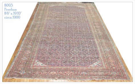 Rug Number 8093 Size 8 6 X 19 10