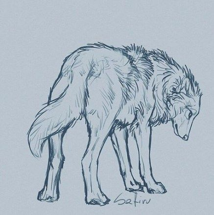 Photo of 50 Ideas for art drawings wolf artworks