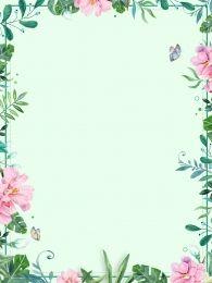 plantas vasculares com flores