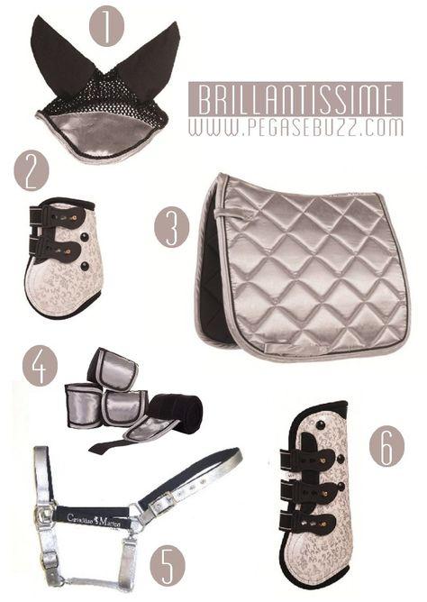 All that glitters - Want this set for Arnie - #bigboybigbling www.pegasebuzz.com | Equestrian Fashion : Brillantissime