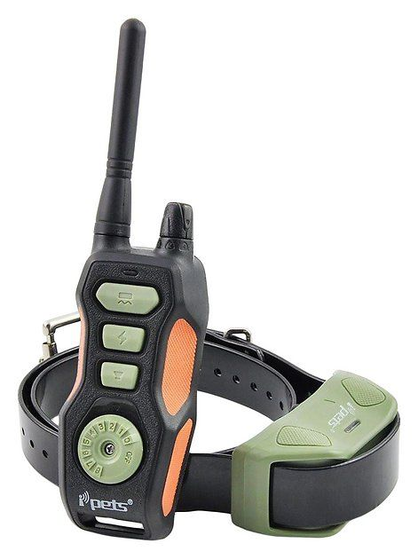 Buy Ipets Pet618 Remote Dog Training Collar 1 Dog At Chewy Com