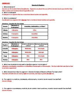 Domains Kingdoms Classification Worksheet Classification Worksheets Domain
