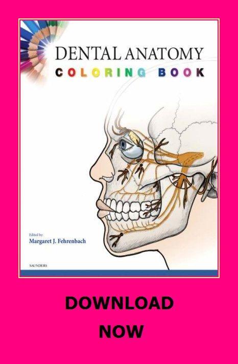 Dental Anatomy Coloring Book Anatomy Coloring Book, Books, Dental Anatomy