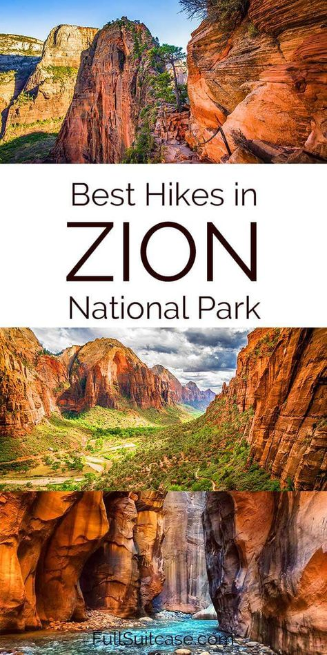 Best hiking trails in Zion National Park and practical tips Best hikes in Zion National Park for all levels & practical tips for hiking in Zion. Find out which trails have the best views! Zion Park, Zion Utah, American National Parks, Us National Parks, Mt Zion National Park, Grand Canyon National Park, Zion Hikes, Utah Hikes, Utah Hiking Trails