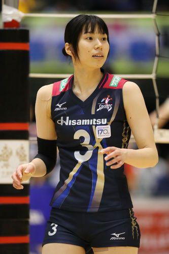 女子 バレー 日本 代表
