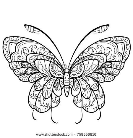 Detailed Butterfly Illustration For Coloring Butterfly Coloring