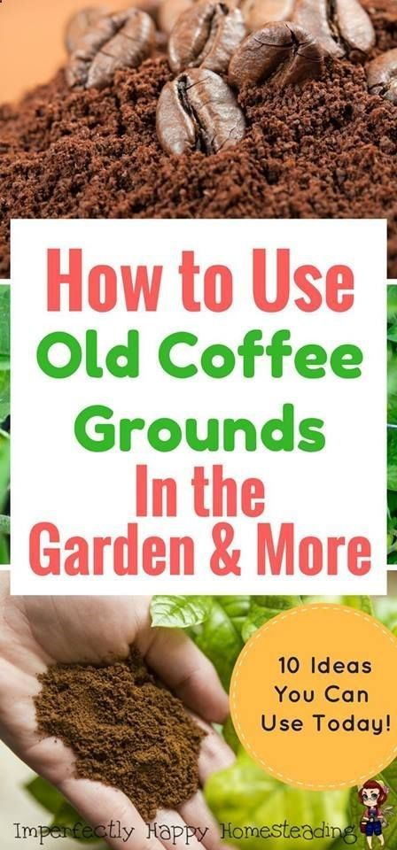 2fded9fe1e1a8288b86960e5e318c185 - Coffee Grounds Good For Vegetable Gardens