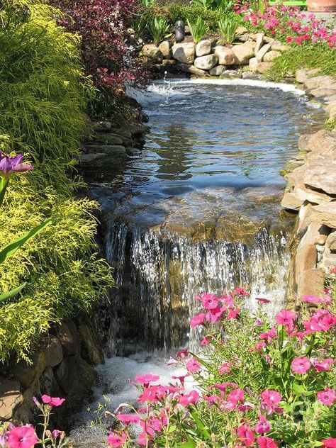 Plantas Indoor, Garden Waterfall, Waterfall Design, Nature Aesthetic, Water Features In The Garden, Ponds Backyard, Backyard Waterfalls, Backyard Patio, Pool Landscaping