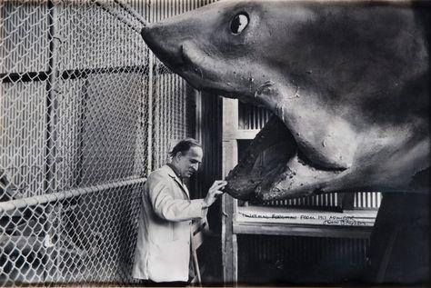 Ingmar Bergmanadmiring one of three original Bruces from Jaws on the Universal backlot, 1975.