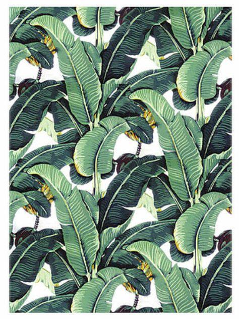 Image of wallpaper banana leaf