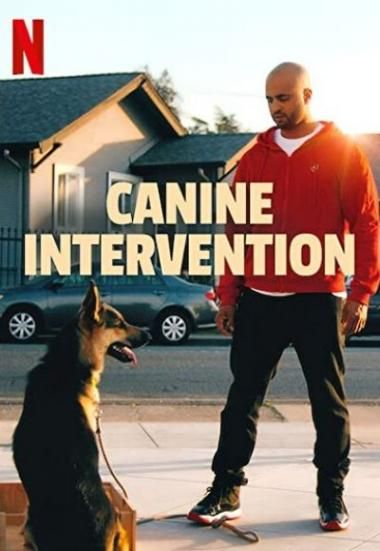 Fmovies Watch Canine Intervention 2021 Online Free On Fmovies Wtf In 2021 Canine Dog Movies Where To Watch Movies