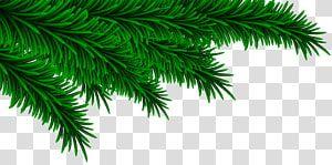 Green Leaves Illustration Christmas Christmas Pine Branches Decorating Transparent Background Png Clip Green Christmas Tree Green Tinsel Leaves Illustration