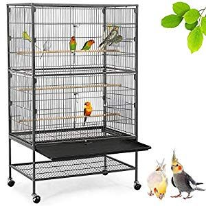 The 10 Best Canary Cage 2020 Reviews Buying Guide Canary Cage