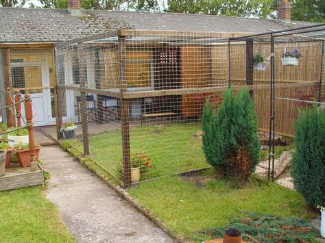 """cat enclosure: we used 2"""" square wire mesh which is far more substantial than chicken wire and you can pull it really tight and straight; without it bending or going out of shape"""