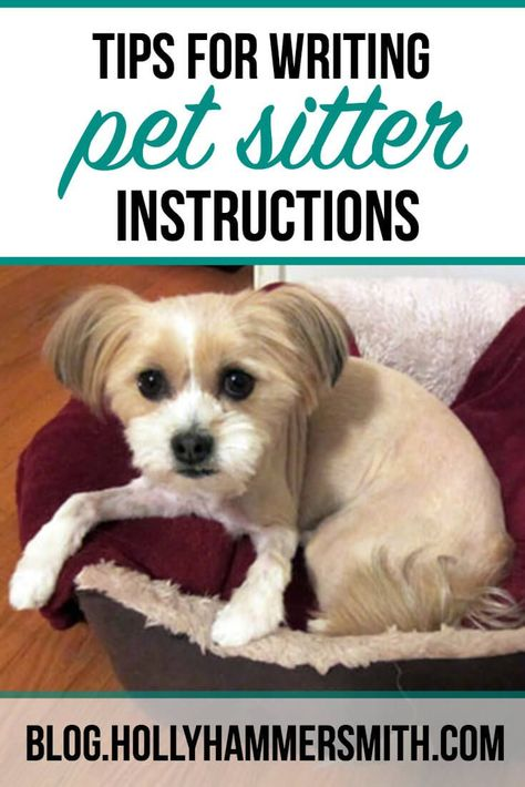 Top Tips For Writing Pet Sitter Instructions Pet Sitting