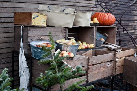 Fall Fruit Stand