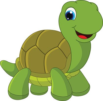 2048 turtle