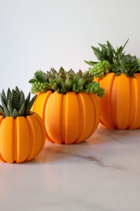 Create your own long-lasting succulent arrangement in this cute pumpkin planter! Made from plant-based plastic, simply put your succulent inside to turn your favorite plant into a piece of Halloween decor.