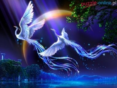 ptaki-mistyczne-piekne-kagaya.jpg (400×300)