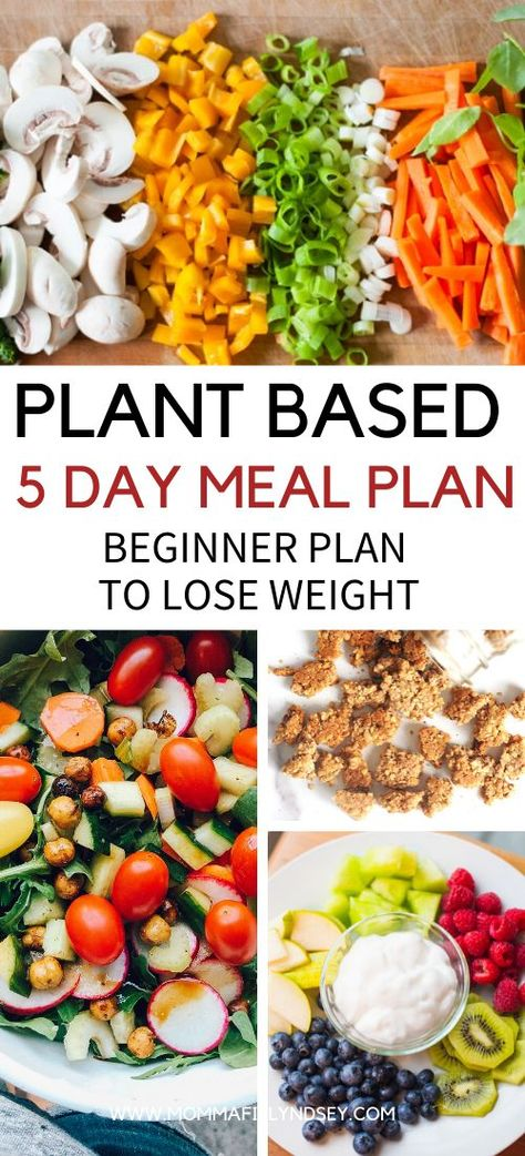 Plant Based Diet on a Budget for Beginners – Momma Fit Lyndsey Plant Based Recipes and 5 Day Meal Plan to Lose Weight for Beginners. Tips and ideas for breakfast, lunch, dinner and snacks. Grocery list and Meal Plan to start plant based lifestyle. Plant Based Diet Meals, Plant Based Meal Planning, Planning Menu, Plant Based Whole Foods, Plant Based Eating, Plant Based Recipes, Plant Base Diet Recipes, Meal Planning Recipes, Healthy Meal Planning