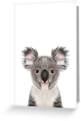 Koala Christmas Card Blank Inside Buy 2 Get 1 Free Cute Etsy Cute Christmas Cards Christmas Cards Cards
