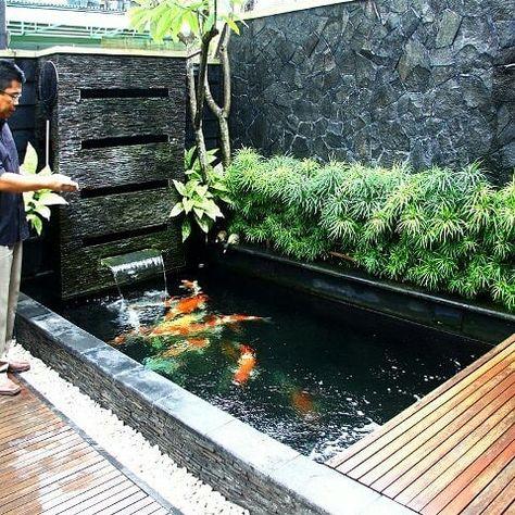 yuk, simak ide desain kolam ikan minimalis mewah dalam