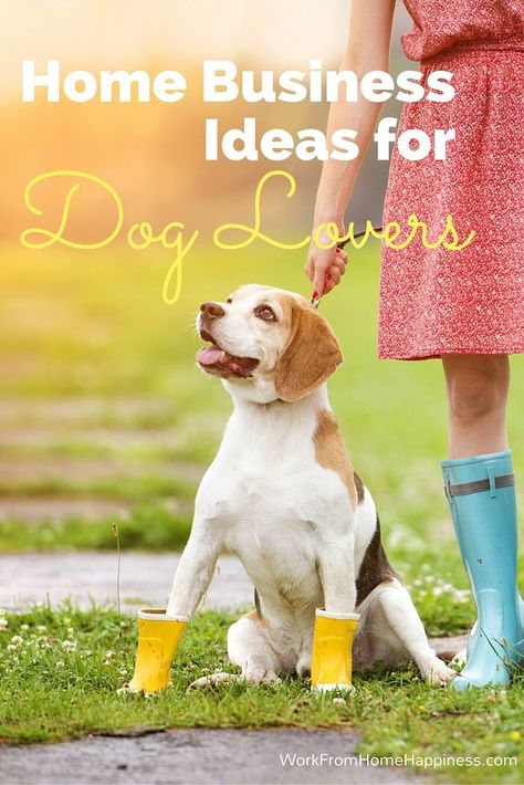 Turn your love of dogs into a career with these home business ideas for dog lovers!