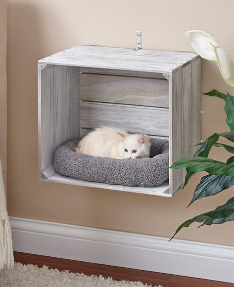 Wall-Mounted Cat Crate BedsYou can find Pet beds and more on our Wall-Mounted Cat Crate Beds Animal Room, Animal Decor, Animal House, Cat Crate, Crate Bed, Crate Nightstand, Crate Table, Cat House Diy, Cat Shelves