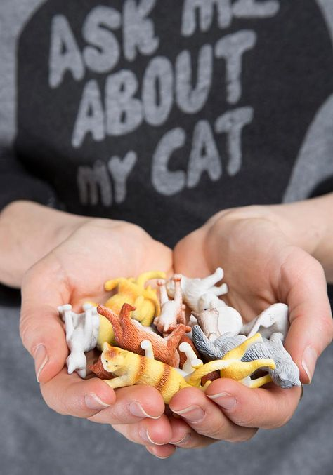 Find out all of the awesome things you can #diy with a bag o' cats!