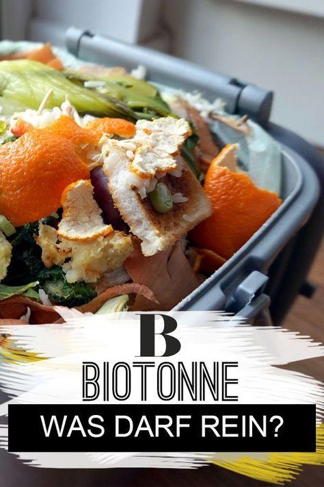 Was gehört in die Biotonne? | Küche | Mülltrennung, Haushalt ...