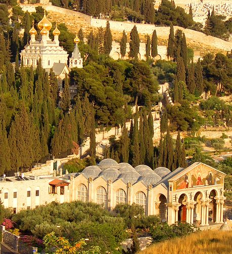 I wanted to sit and stroll for days. Church of All Nations, Garden of Gethsemane, Israel Jerusalem Israel, Israel Palestine, Heiliges Land, Terra Santa, Israel History, Israel Travel, Place Of Worship, Holy Land, Kirchen