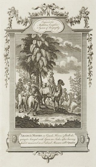 Arabs & Moors on Camels, Horses, & Bullocks, going to Senegal with