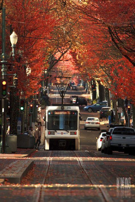 Tunnel of Color and Light, Portland, Oregon