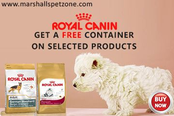 Royal Canin Pet Food Up To 25 Off And Get A Free Container On