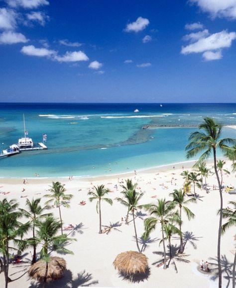 Vive Hotel Waikiki Honolulu Hi Waikiki Hotels Hawaii Vacation