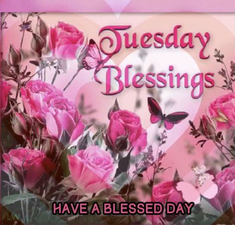 Tuesday Blessings GIF