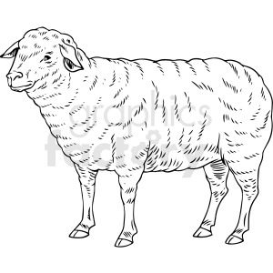 Black And White Realistic Sheep Vector Clipart Sheep Vector Sheep Illustration Clip Art