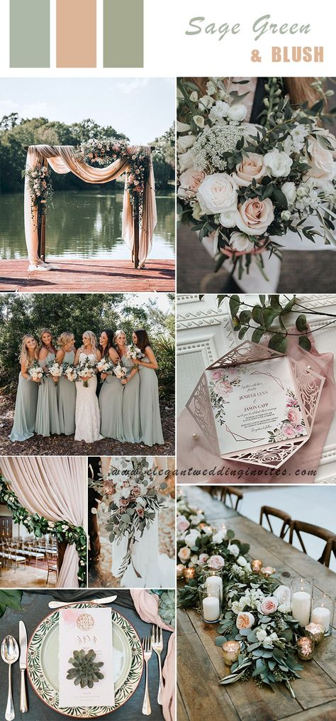 6 Spring & Summer Wedding Color Ideas Brides can Try in romantic modern rustic sage green and blush wedding colors., wedding inspiration 6 Spring & Summer Wedding Color Ideas Brides can Try in Blush Wedding Colors, Spring Wedding Colors, Wedding Color Schemes, Unique Wedding Colors, Rustic Summer Weddings, Green Wedding Themes, Wedding Dress Colors, Summer Wedding Themes, Spring Wedding Dresses