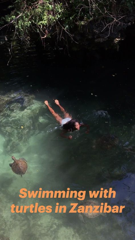 Swimming with turtles in Zanzibar
